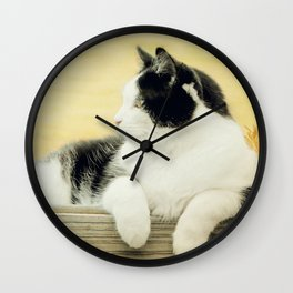 Suzy Copper Sun - Tuxedo Cat Wall Clock