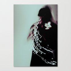 lady II Canvas Print