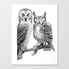 Bubo and Strix Canvas Print
