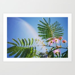 Magic nature Art Print