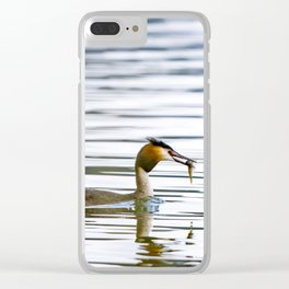 Great crested grebe and its catch Clear iPhone Case