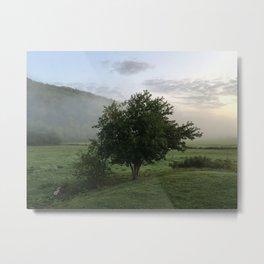 Good Misty Morning Metal Print
