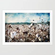 Blue skies and open fields Art Print