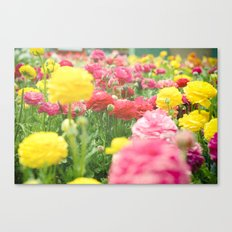A Little Bit of Happiness Canvas Print