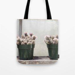 Three Little Cacti Tote Bag