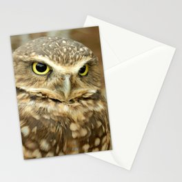 Owl Eyes, They're Watching You Stationery Cards
