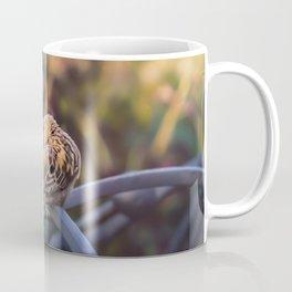 I'm hiding Coffee Mug