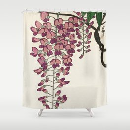 Blossoming Wisteria flower - Vintage Japanese Woodblock Print Shower Curtain