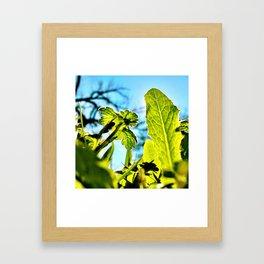 Bug Life Framed Art Print