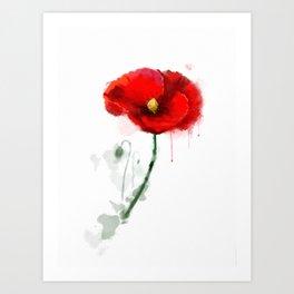 Red Poppy watercolor digital painting Art Print