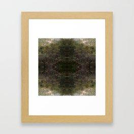 Yosemite Valley IV Framed Art Print