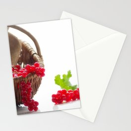 Fresh fruity Decorating Stationery Cards