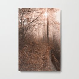 Misty Sun Kissed Trail Metal Print