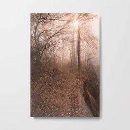 Misty Sun Kissed Trail Metal Print