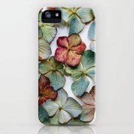 Hydrangea Petals no. 1 iPhone Case