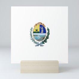 Flag of Salto, Uruguay Mini Art Print