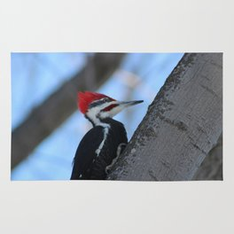 Wood Pecker Rug