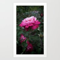 ombre Art Prints featuring Ombre by T & K Arts