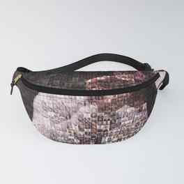 Joe: 365 Guest Mosaic Fanny Pack