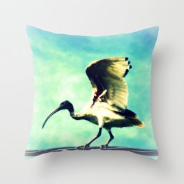 Ibis Bird Throw Pillow