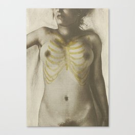 Vintage Anatomical Photo, 1908 - Female Canvas Print