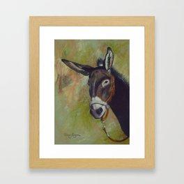 Donkey Trail Framed Art Print