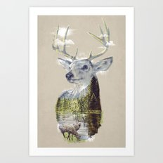 Mo'deer' Nature Art Print