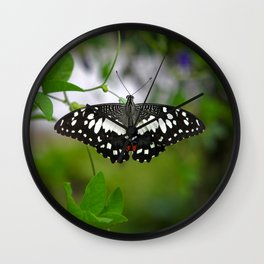 Butterfly Medium Wall Clock