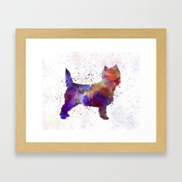 Cairn Terrier in watercolor Framed Art Print