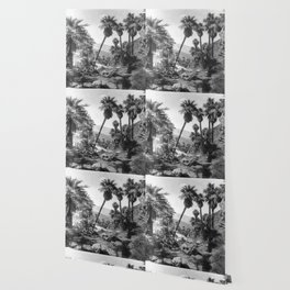 Palm Springs - Black and White Photography Wallpaper
