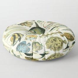 Fish Illustration Floor Pillow