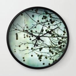Plane Beauty Wall Clock