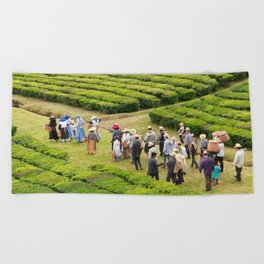 Tea gardens Beach Towel