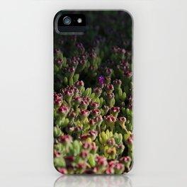 Mini macro flowers cactus succulent iPhone Case