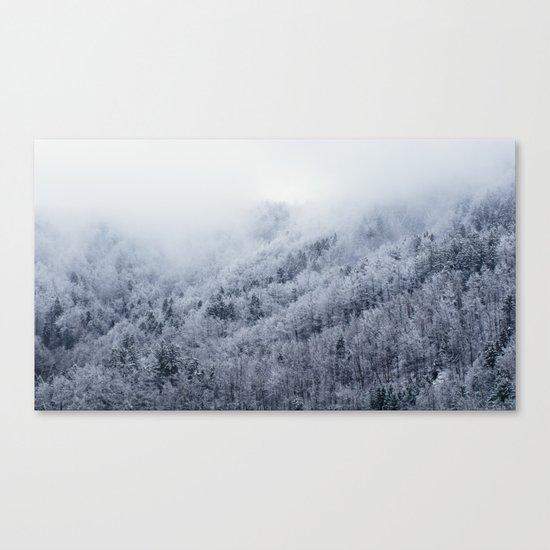Winter Cometh Canvas Print