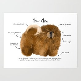 C is for Chow Chow Art Print