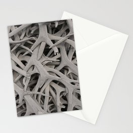 REMNANTS OF MATING SEASON Stationery Cards