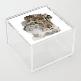 Lynx Acrylic Box