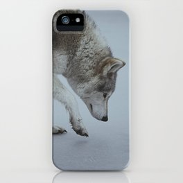 Ice iPhone Case