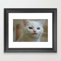 What is this??? Framed Art Print