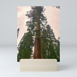 Sequoias in April Mini Art Print