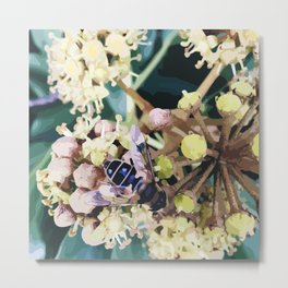 Bee on a flower in Autumn colours Metal Print