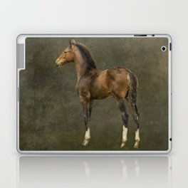 Bred for Beauty dk Laptop & iPad Skin