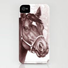 Stare of The Stallion iPhone (4, 4s) Slim Case