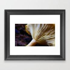 Mushroom Macro Framed Art Print