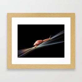 Snail (on black background) Framed Art Print