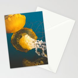 Pacific Sea Nettle Jellyfish II Stationery Cards