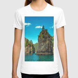 Kenai Fjords National Park America sea cliffs mountains Alaska USA T-shirt