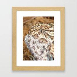 Chameleon - Macro Portrait Framed Art Print