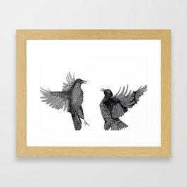Ravens. Framed Art Print